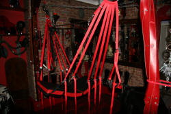 """The hanging restraints were all very much enjoyed..."""